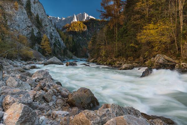 http://www.noc-austria.at/bilder/int2018/gesaeuse.jpg